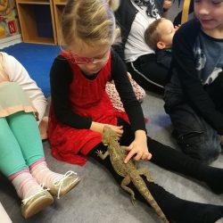 Skægagame på børnehave besøg