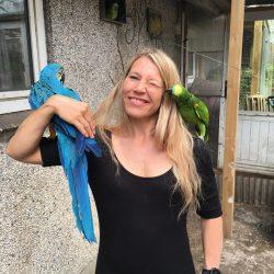 Leo den blågule ara papegøje, Tine Nielsen