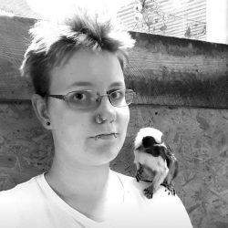 Primat - Paryk tamarin