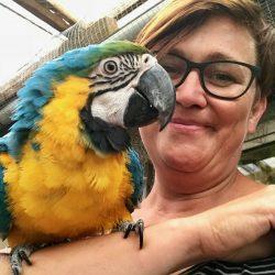 Papegøje nusser