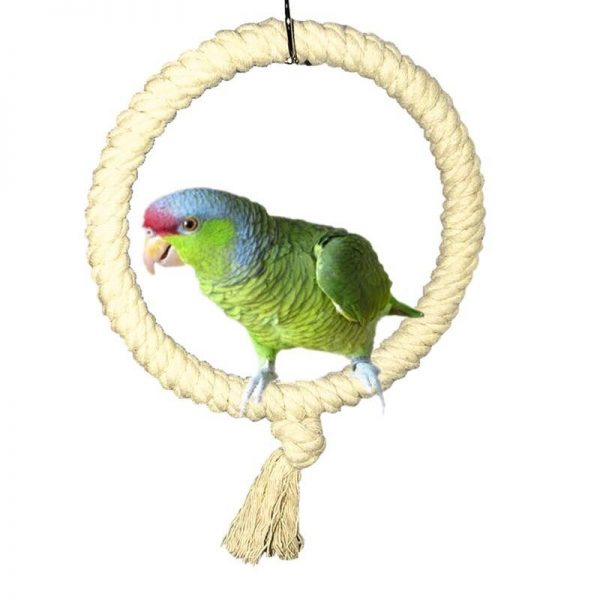 Reb gynge til papegøjer