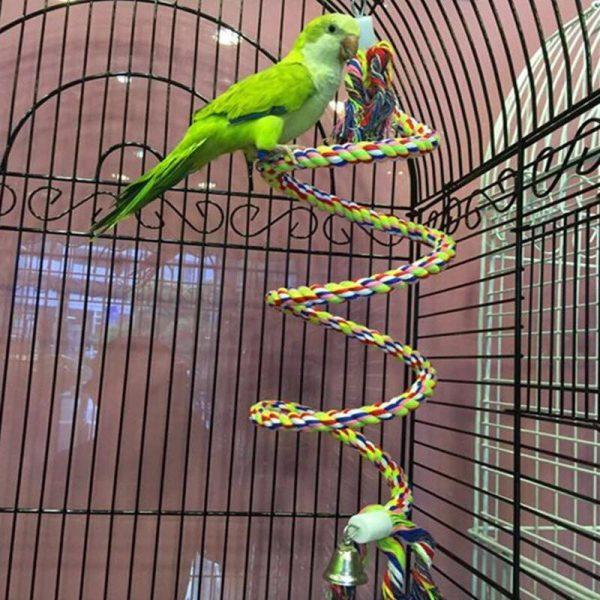 Spiral tov til papegøjer