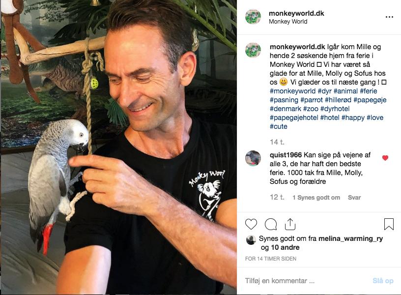 Papegøje hotel i Monkey World