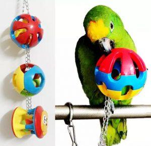Papegøje bold