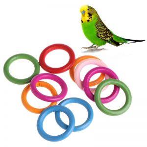 Fugle ringe til leg