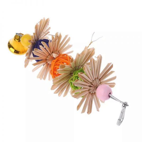 Papegøje bide legetøj