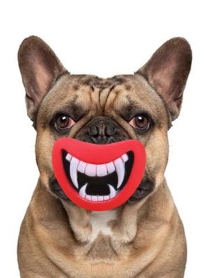 Bide legetøj til hunde