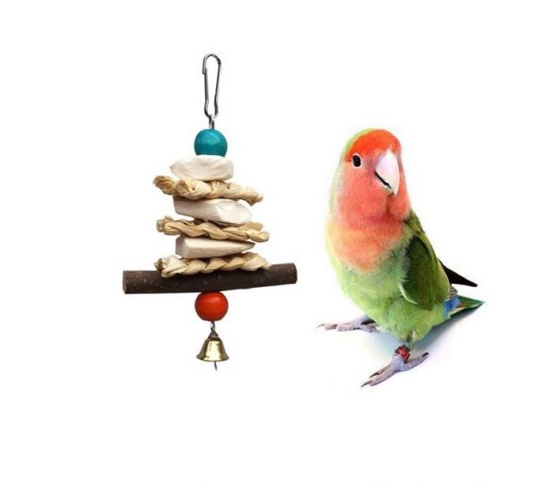 Papegøje legetøj med calsium s