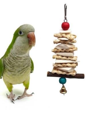 Papegøje legetøj med calsium l
