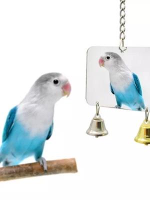 Firkantet spejl med klokker til fugle