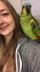 Min sommerferie på papegøje hotel
