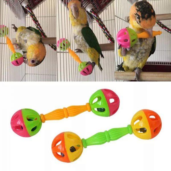 Rangle til papegøjer med klokker