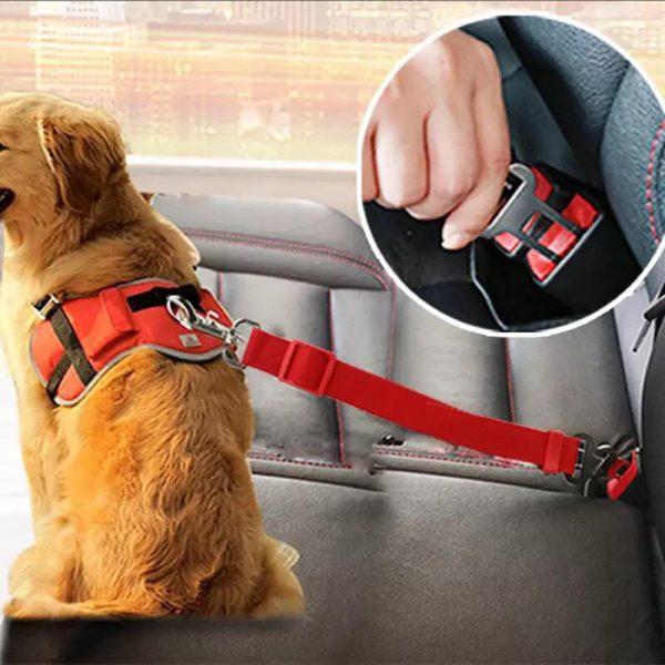 Hundeline til sikkerhedssele