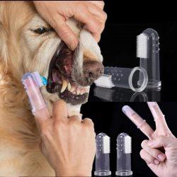 Hundetandbørste