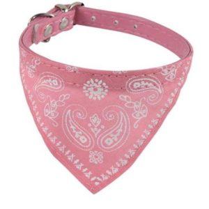 Hunde Halsbånd med bandana