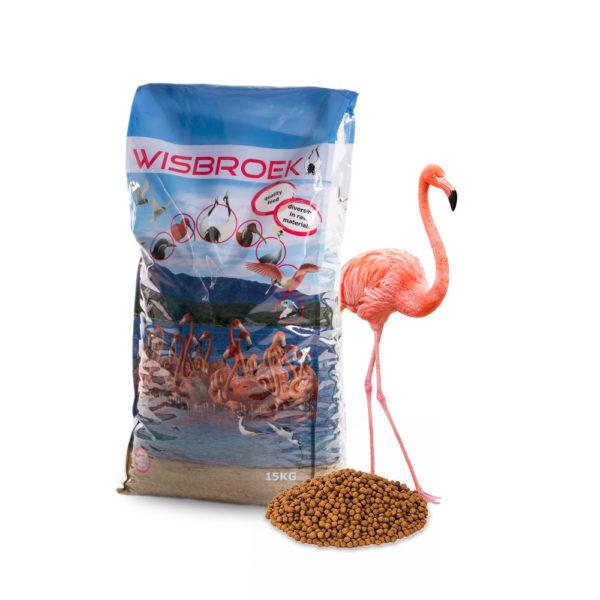 Flamingo foder