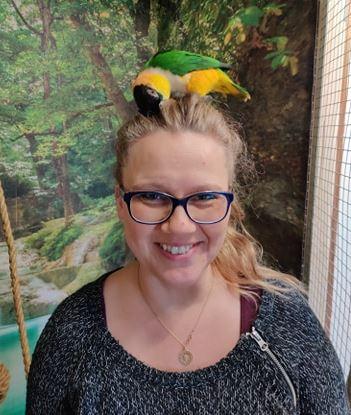 Ny papegøje pension