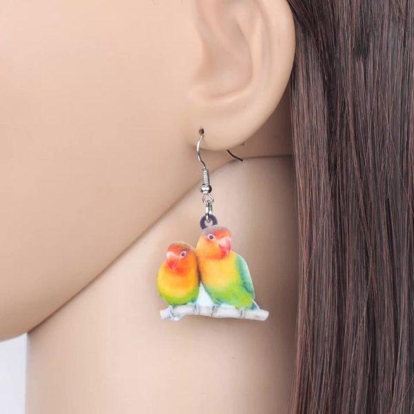Ørering med dværgpapegøjer