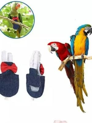 Papegøje Suit