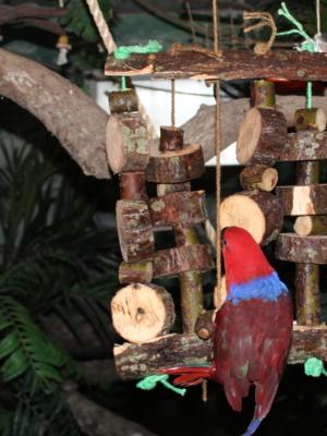 Natur trælegetøj XL