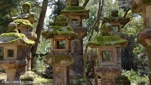 Entre Den Japanske Have