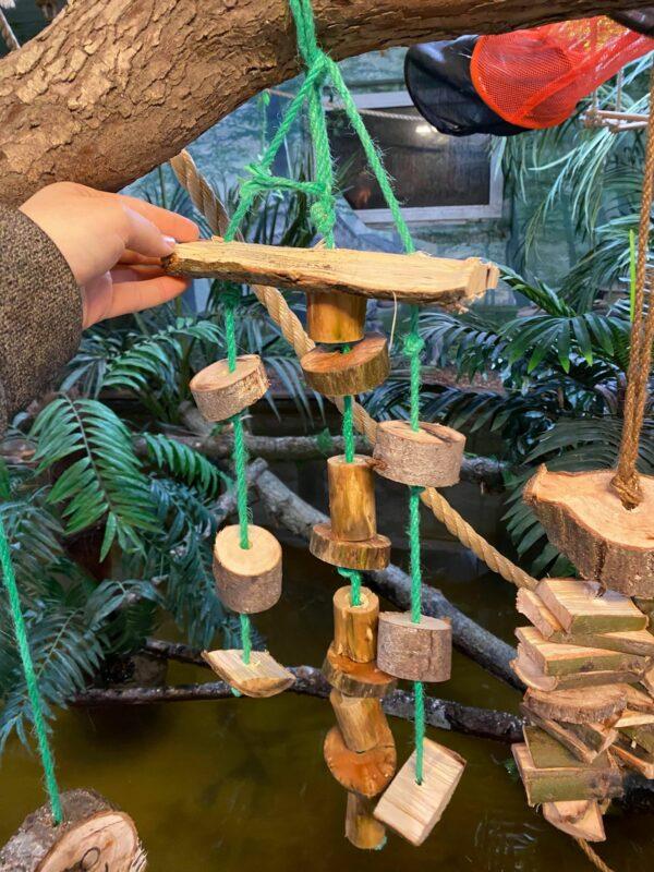 Naturlegetøj til papegøjer