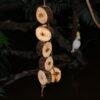 Natur Trælegetøj M
